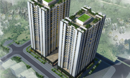 Tư vấn lựa chọn nhà thầu: Chung cư HH3, HH4 Golden Land 5